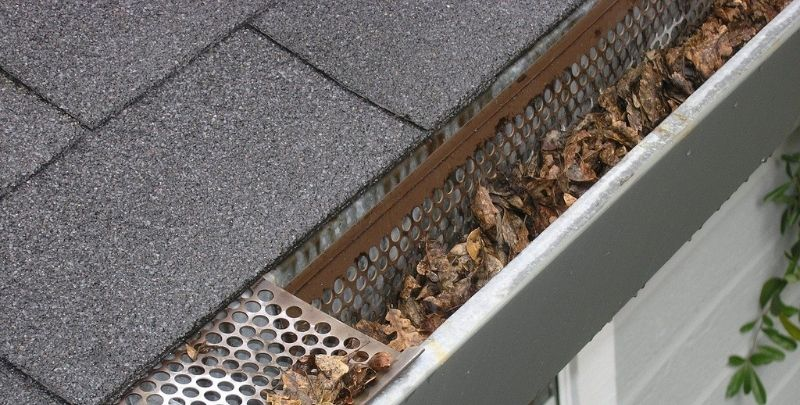 gutters blocked with leaves and debris